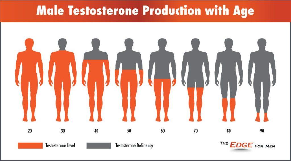 Testosteron a stárnutí